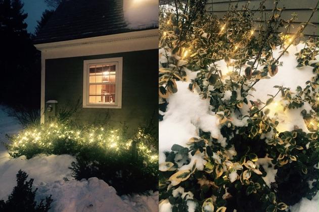 winter lights; janebalshaw.com